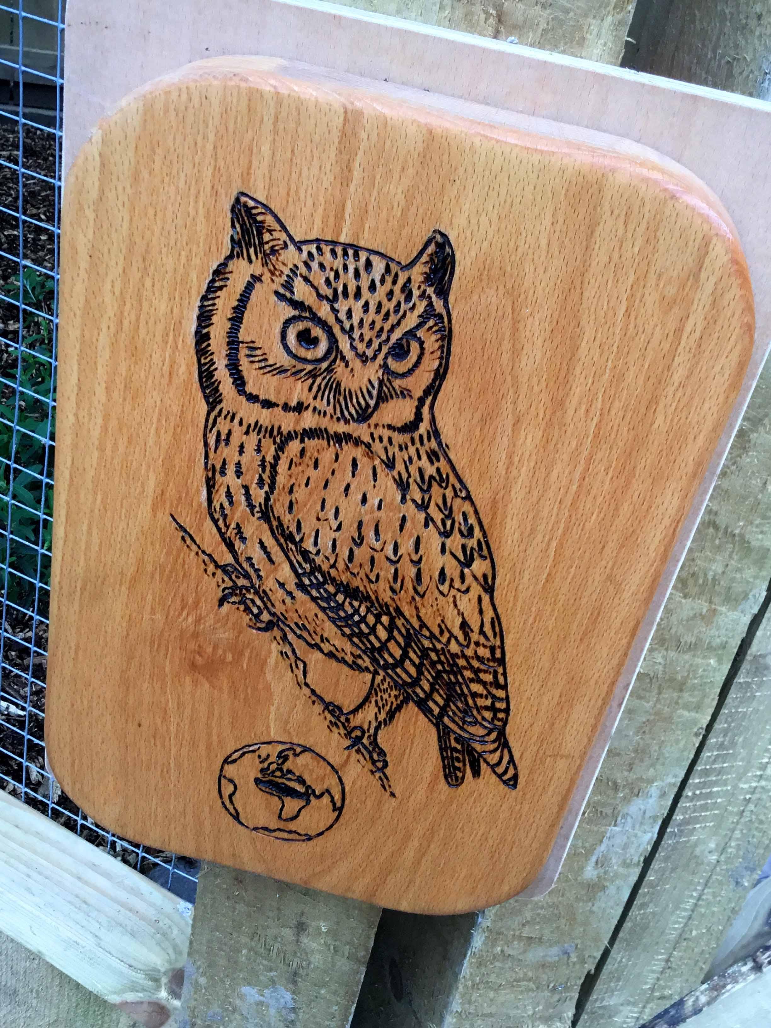 Owl Parliament 11