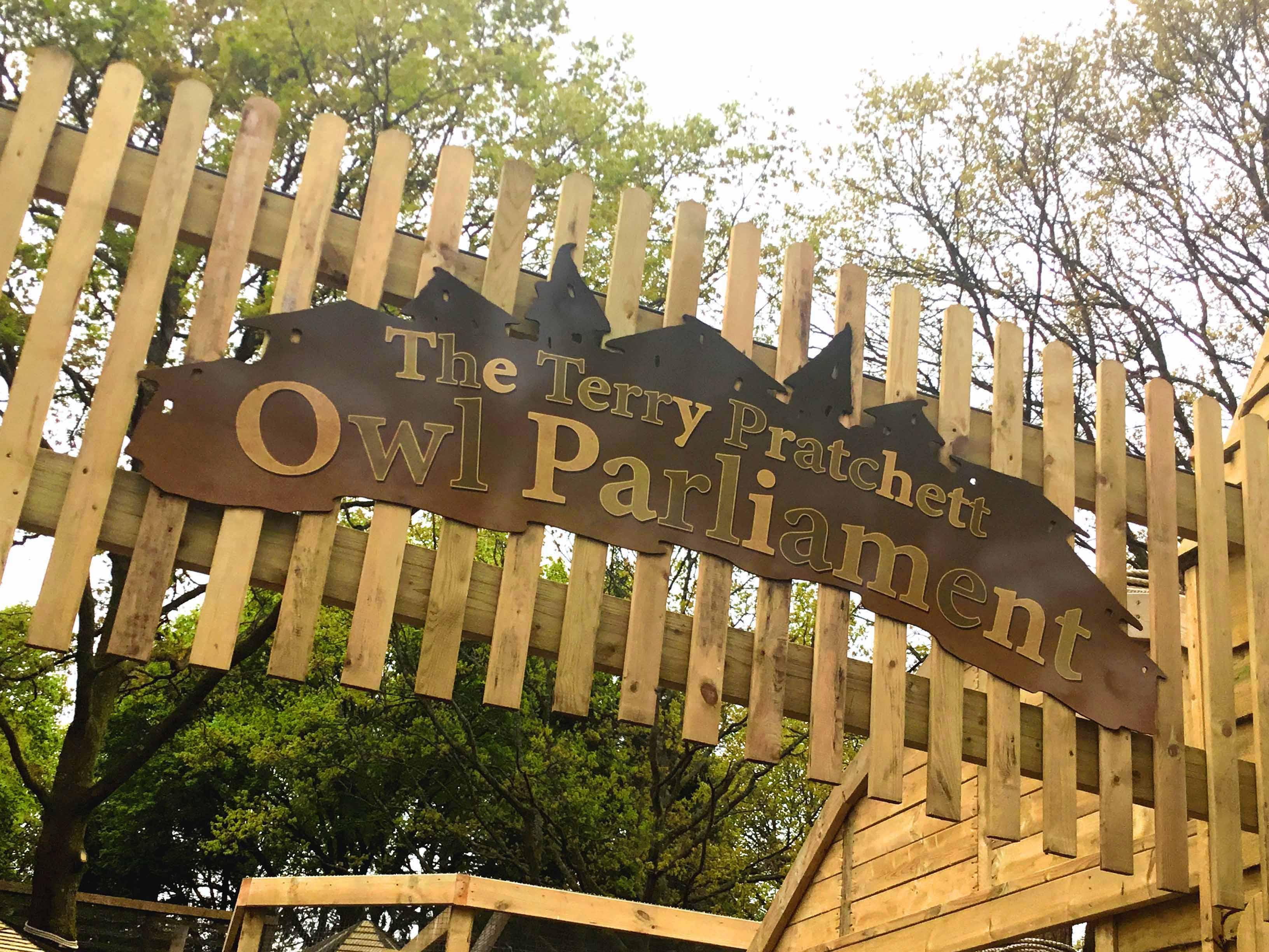 Owl Parliament 9