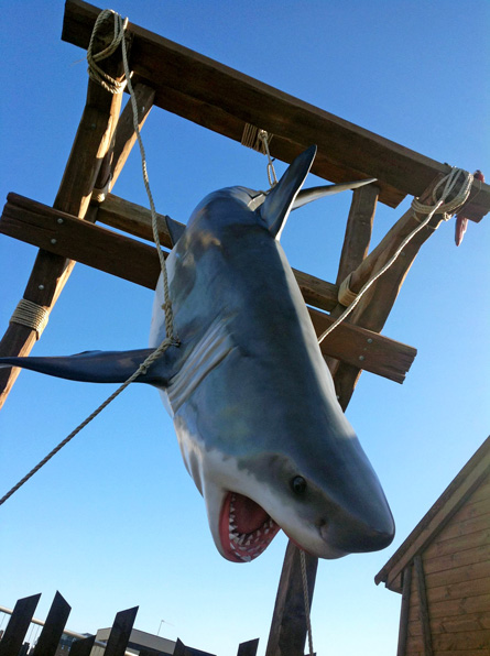 Shark-Bite-Grill-1