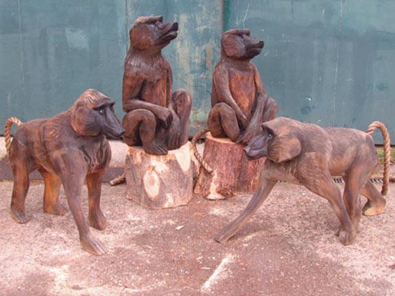baboons-2