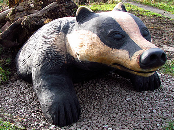 badger-2